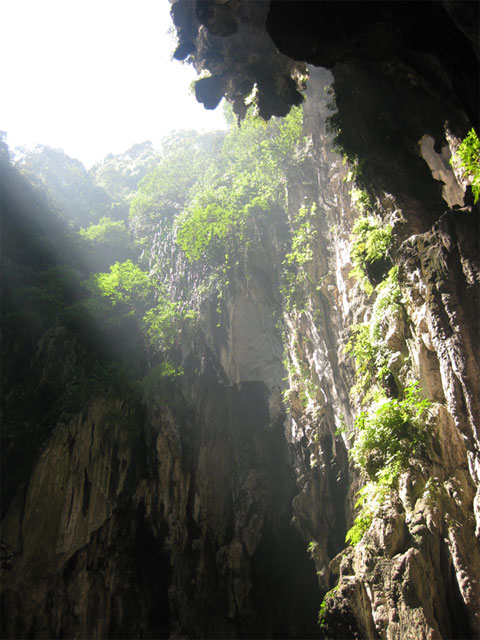 Batu Caves - Looking Up